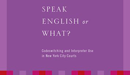 speak english or what -book cover